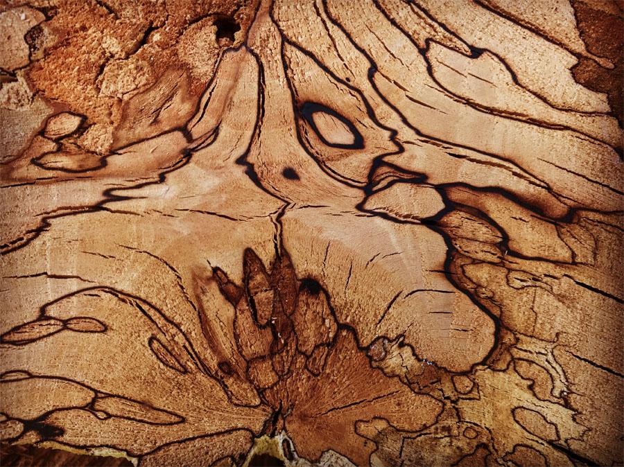 Log Patterns Log Art Suffolk